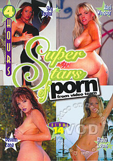 Superstars of Porn Volume 14 Box Cover