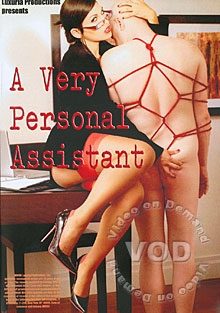 A Very Personal Assistant Box Cover