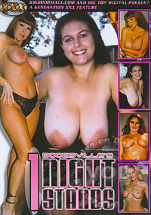 Boobsville's 1 Night Stands Box Cover