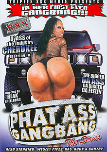 Phat Ass Gang Bang The Series Box Cover