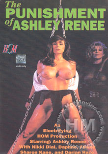 The Punishment Of Ashley Renee Box Cover