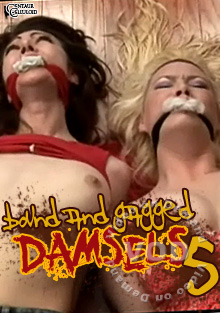 Bound & Gagged Damsels 5 Box Cover