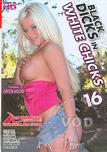 Black Dicks In White Chicks 16 Box Cover