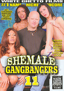 Shemale Gangbangers 11 Box Cover