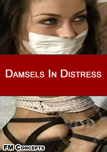 Damsels In Distress Box Cover