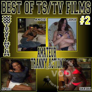 Best Of TS/TV Films #2 Box Cover