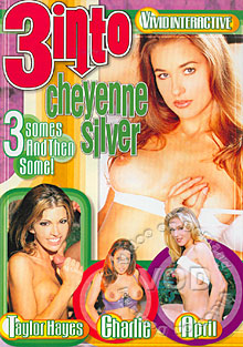 3 Into Cheyenne Silver Box Cover