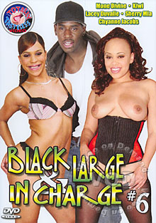 Black Large & In Charge #6 Box Cover