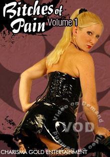 Bitches Of Pain Volume 1 Box Cover