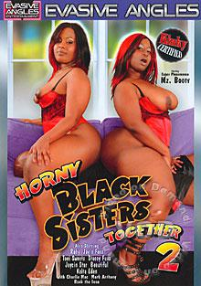 Horny Black Sisters Together 2 Box Cover