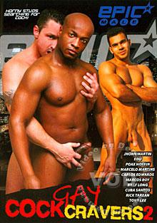 Gay Cock Cravers 2 Box Cover