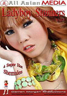 Lady Boy Stunners Vol. 3 Box Cover