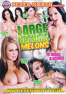 Large Natural Melons
