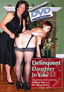 Delinquent Daughter-In-Law Box Cover