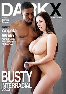 Cover von 'Busty Interracial Vol. 3'