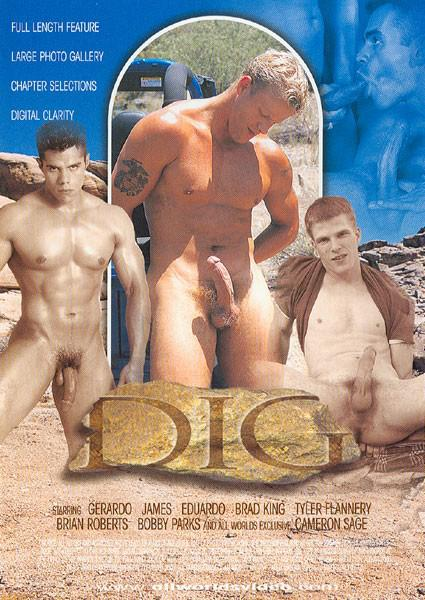 Dig (AWV) Cover Back