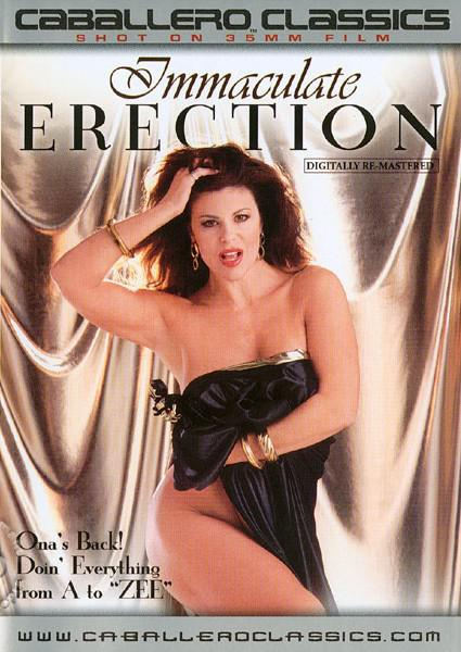 Immaculate Erection Box Cover