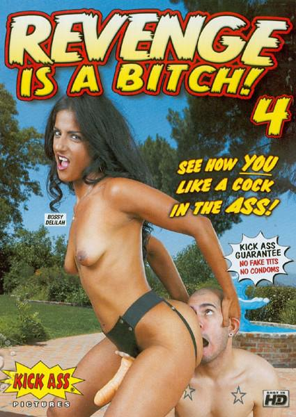 Revenge Is A BItch! 4 Box Cover