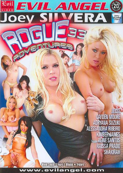 Rogue Adventures 33 Box Cover