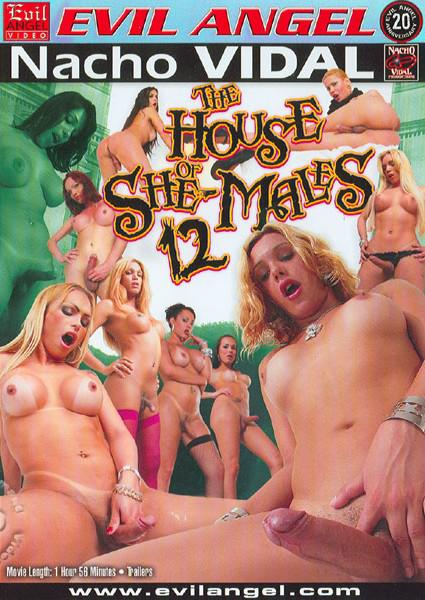 The House Of She-Males 12