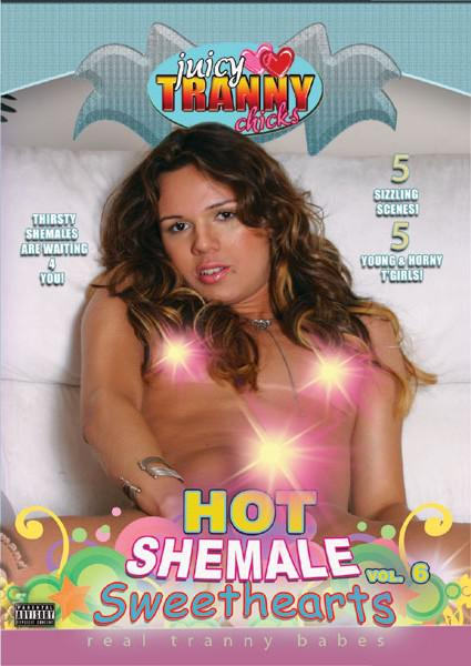 Hot Shemale Sweethearts Vol. 6 Box Cover