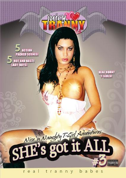 She's Got It All #3 Box Cover