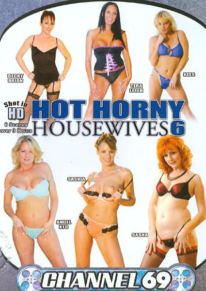 Hot Horny Housewives 6 Box Cover