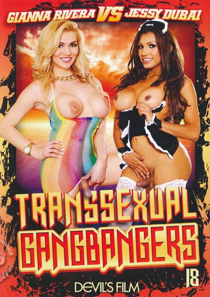 Transsexual Gangbangers 18 Box Cover