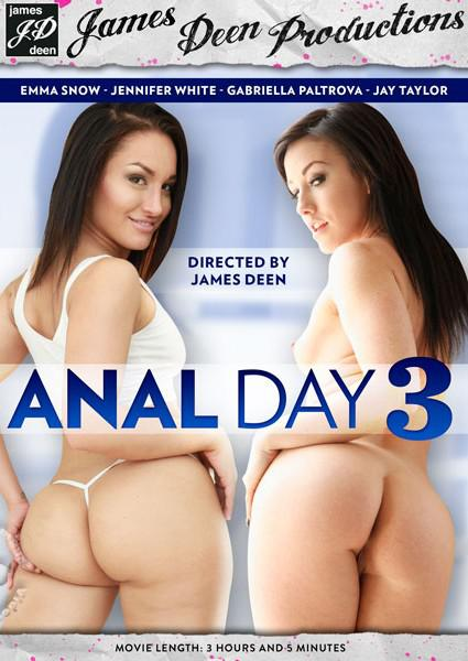 Anal Day 3 Box Cover