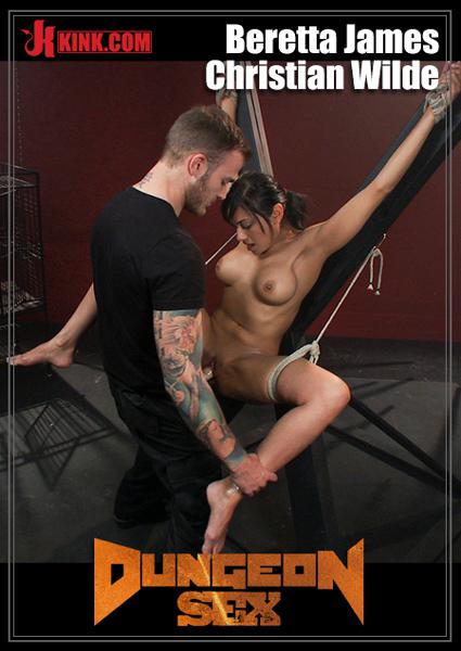 Dungeon Sex - Willing To Serve Box Cover