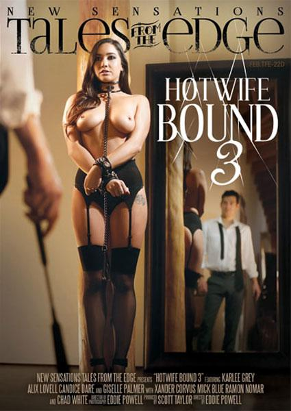 Hotwife Bound 3 Box Cover