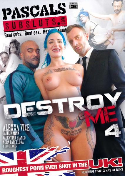 Destroy Me 4 Box Cover