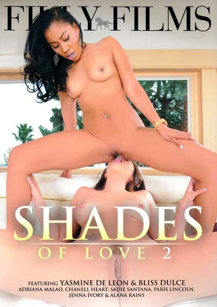 Shades Of Love 2 Box Cover