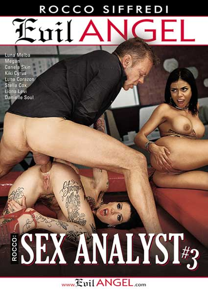 Rocco: Sex Analyst #3 Box Cover