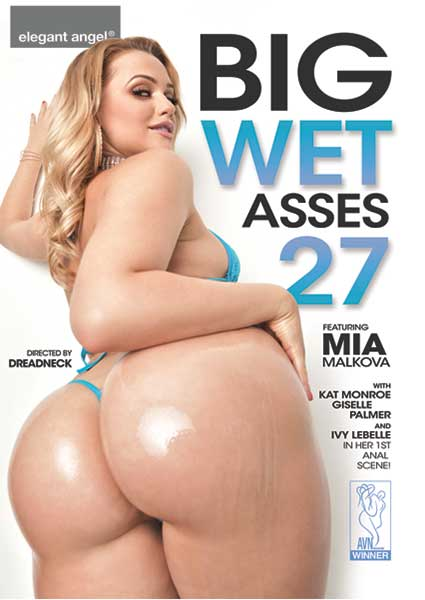 Big Wet Asses 27 Box Cover
