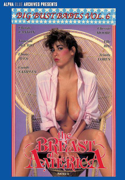 Big Bust Babes 6 - The Breast of America Box Cover