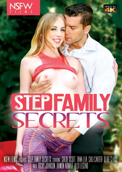 Step Family Secrets Box Cover
