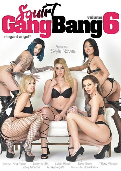 Squirt Gangbang Volume 6 Box Cover