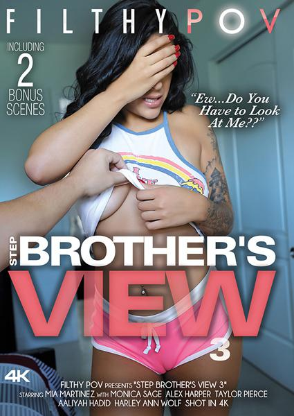 Step Brother's View 3 Box Cover