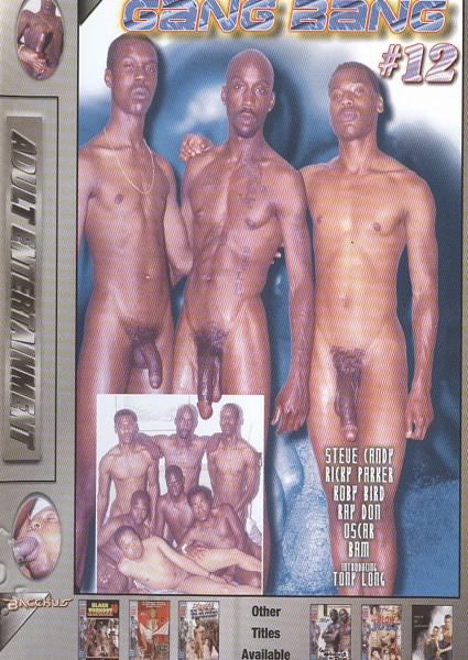 Black Gang Bang #12 Box Cover