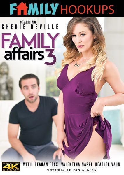 Family Affairs 3 Box Cover