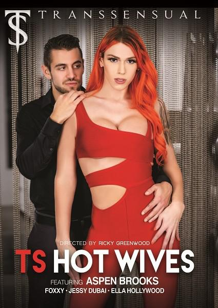 TS Hot Wives Box Cover