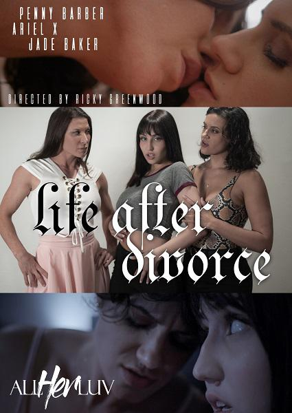 Life After Divorce Box Cover