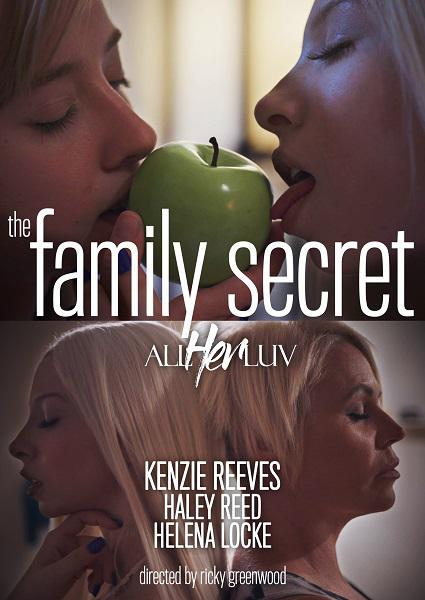 The Family Secret Box Cover