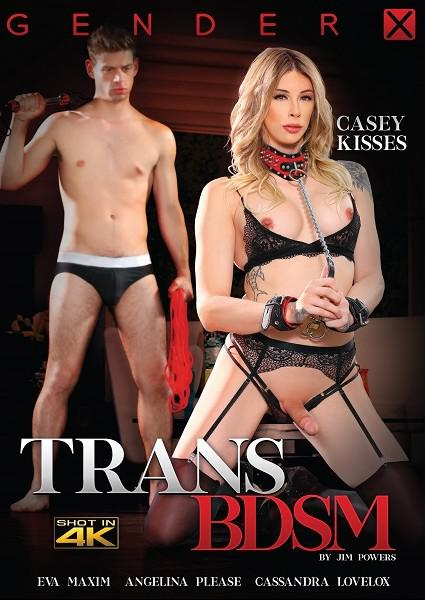Trans BDSM Box Cover