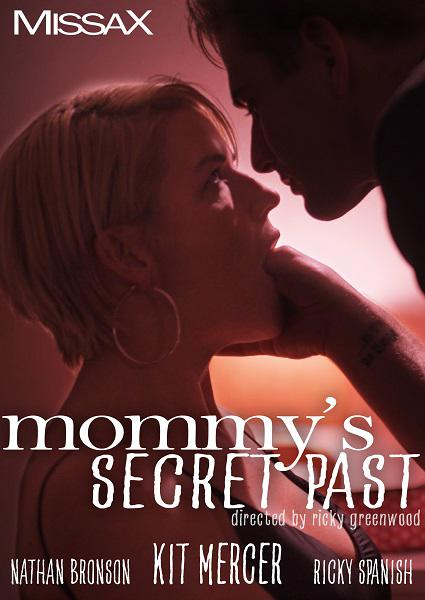 Mommy's Secret Past Box Cover