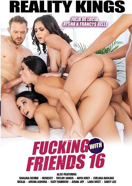 Fucking With Friends 16 Box Cover