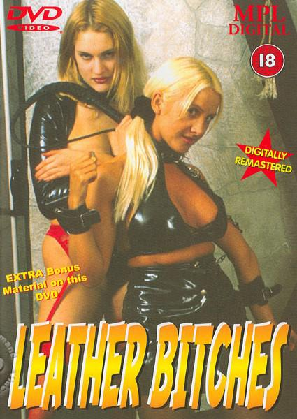 Leather Bitches Box Cover