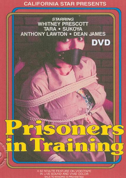 Prisoners In Training Box Cover